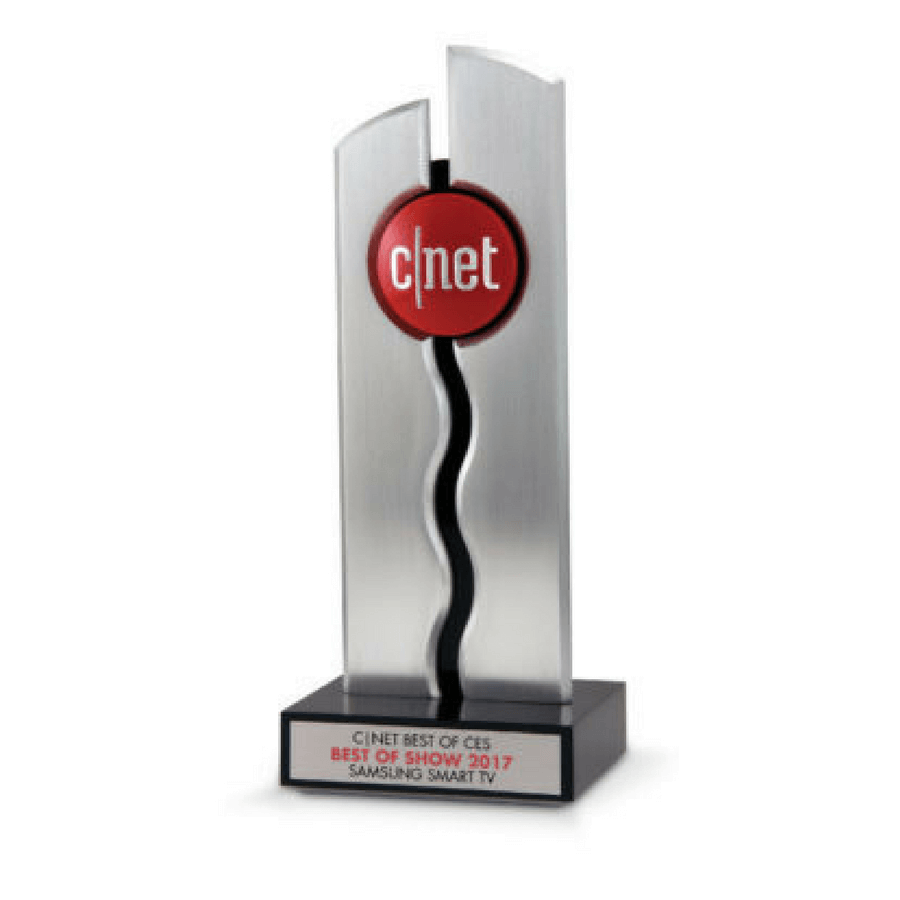cnet software best of show award bruce fox custom logo awards