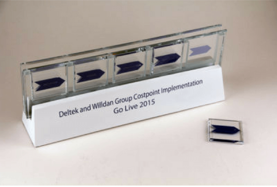 Deltek Costpoint Go Live Display